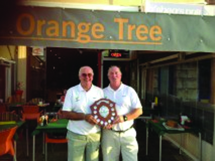 22_orange-tree